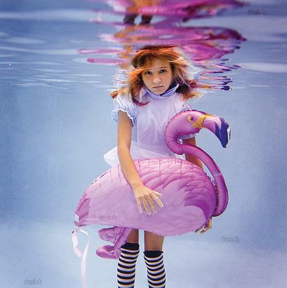 Alice-flamingo