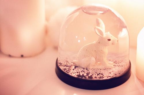 Bunny-snow-globe