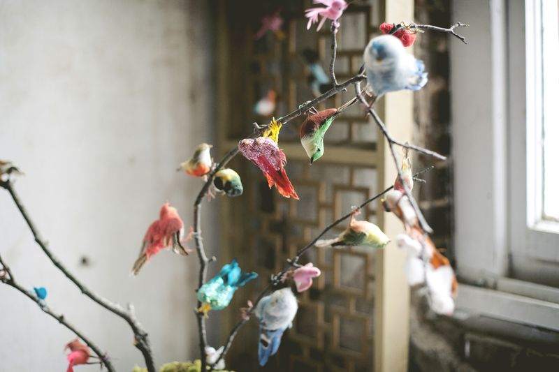 Vintage feather birds
