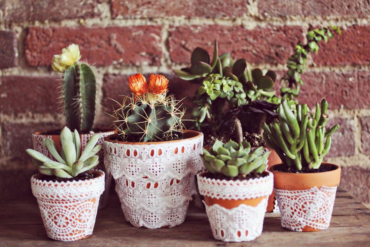 Pretty Lace Flower Pots