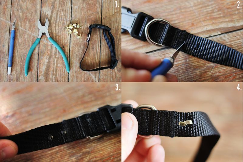 Dog collar diy