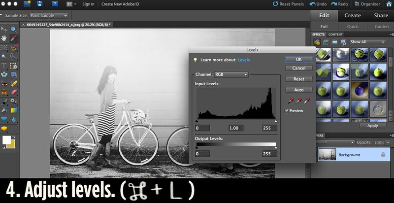 Adobe Elements step 4