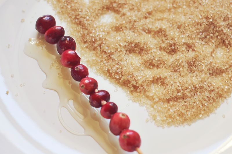 Sugared Cranberry Sticks