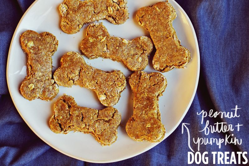 Diy dog biscuits