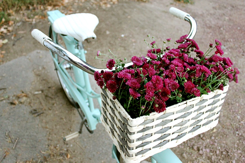 Bike Basket DIY