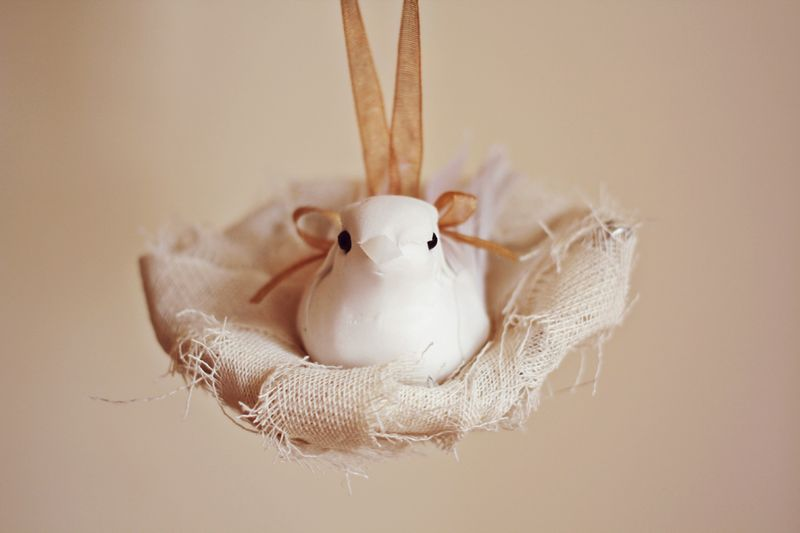 Lovely bird nest DIY