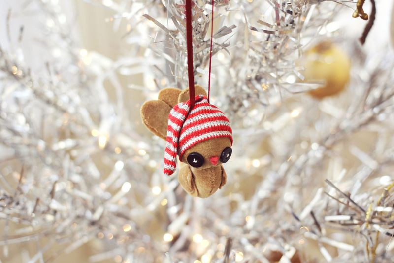 Handmade Ornament by Skunkboy Creatures