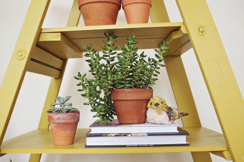 How to retrofit a ladder for shelves