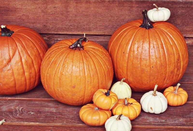 Pumpkins!!!!!