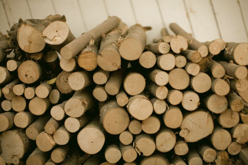 Neatly Stacked Logs