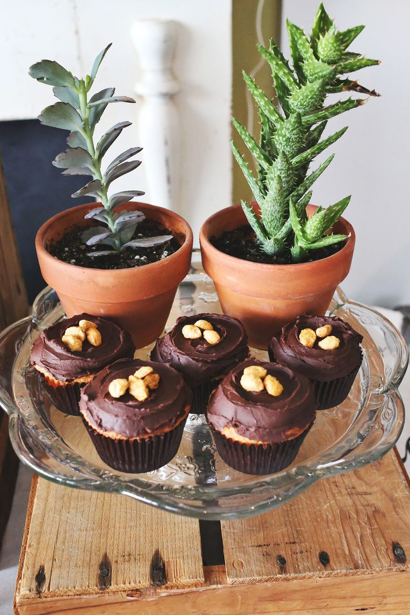 Peanut Butter Cupcakes Black Coffee Frosting A