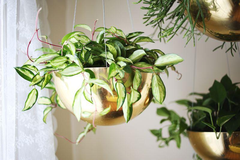 Vintage Brass Planters www.abeautifulmess.com