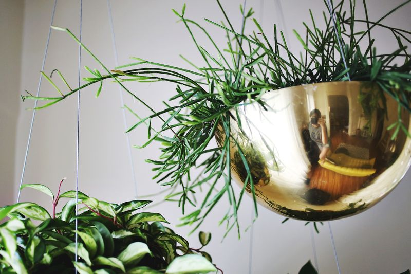 Vintage Brass Planters. www.abeautifulmess.com