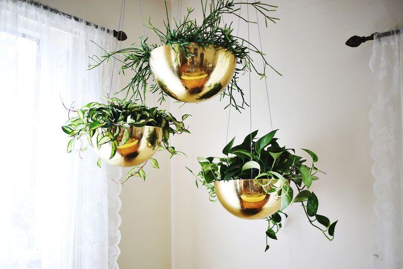Vintage Brass Planters:www.abeautifulmess.com