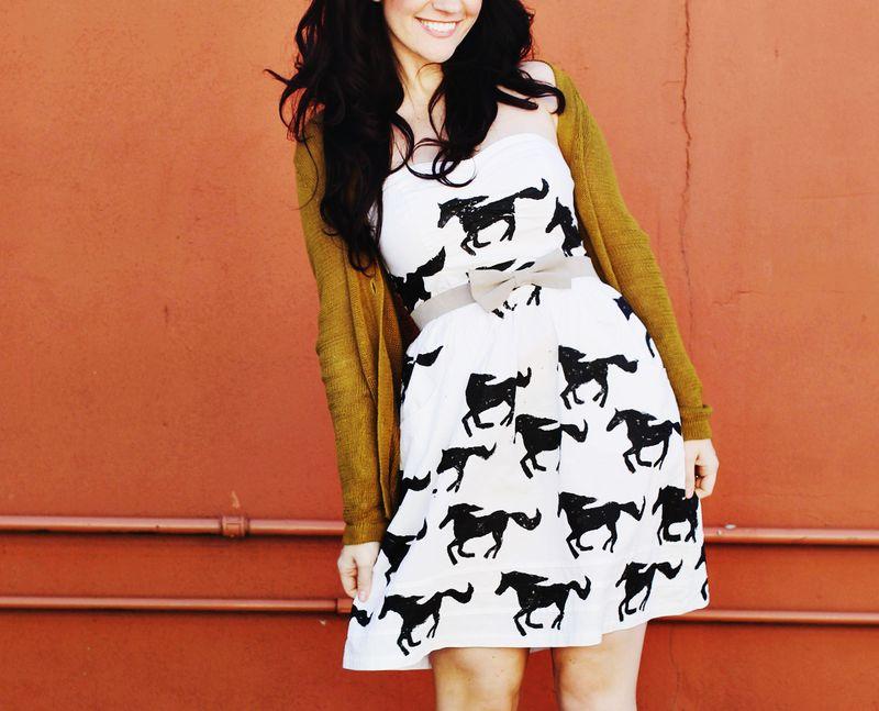 Diy horse print dress