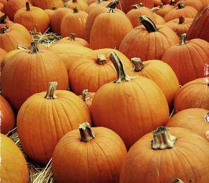 30 Ideas to Set the Mood for Autumn!