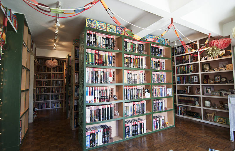 The amazing home library of sherri and max bemis