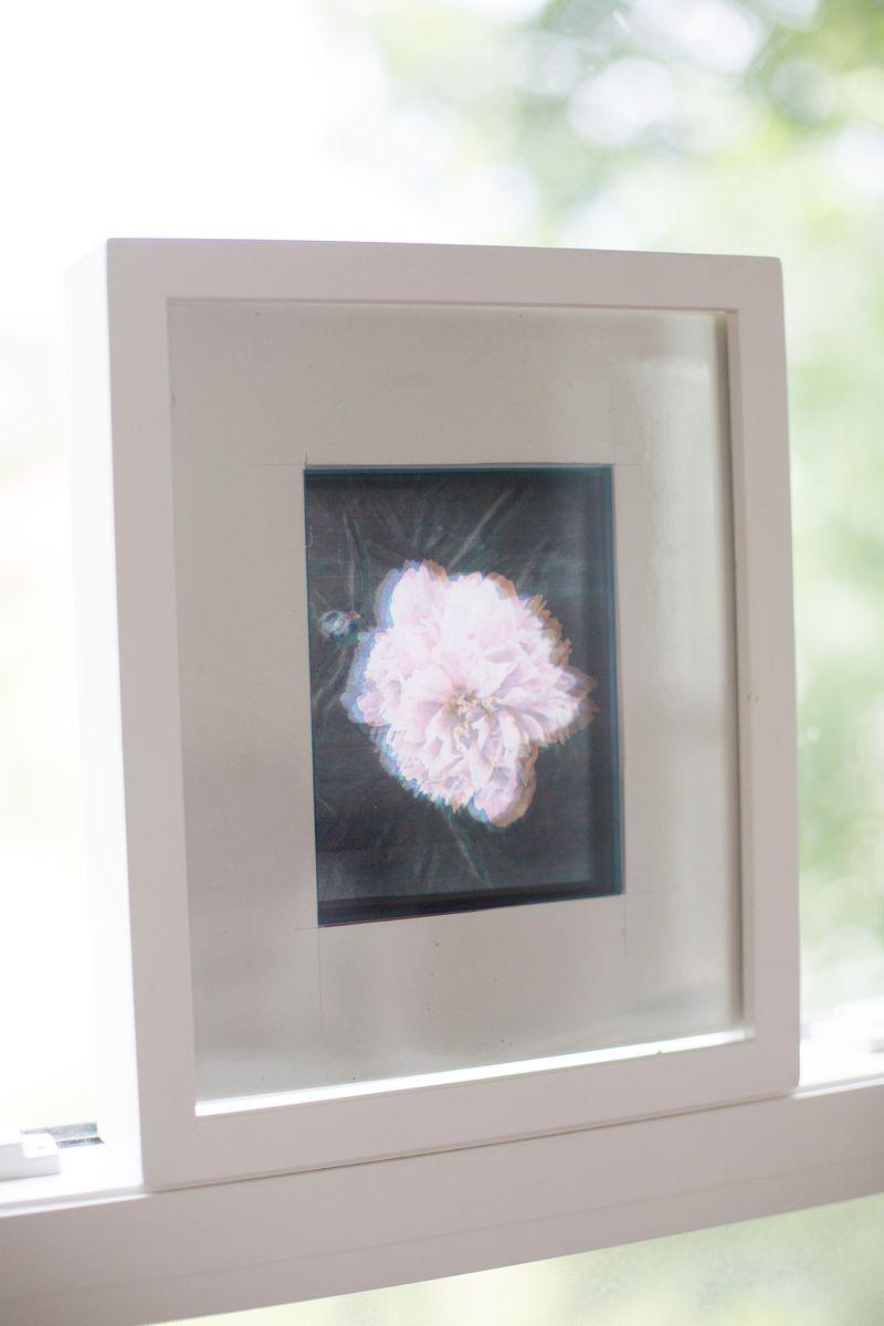 CMYKsplit flower in window (click through for more)