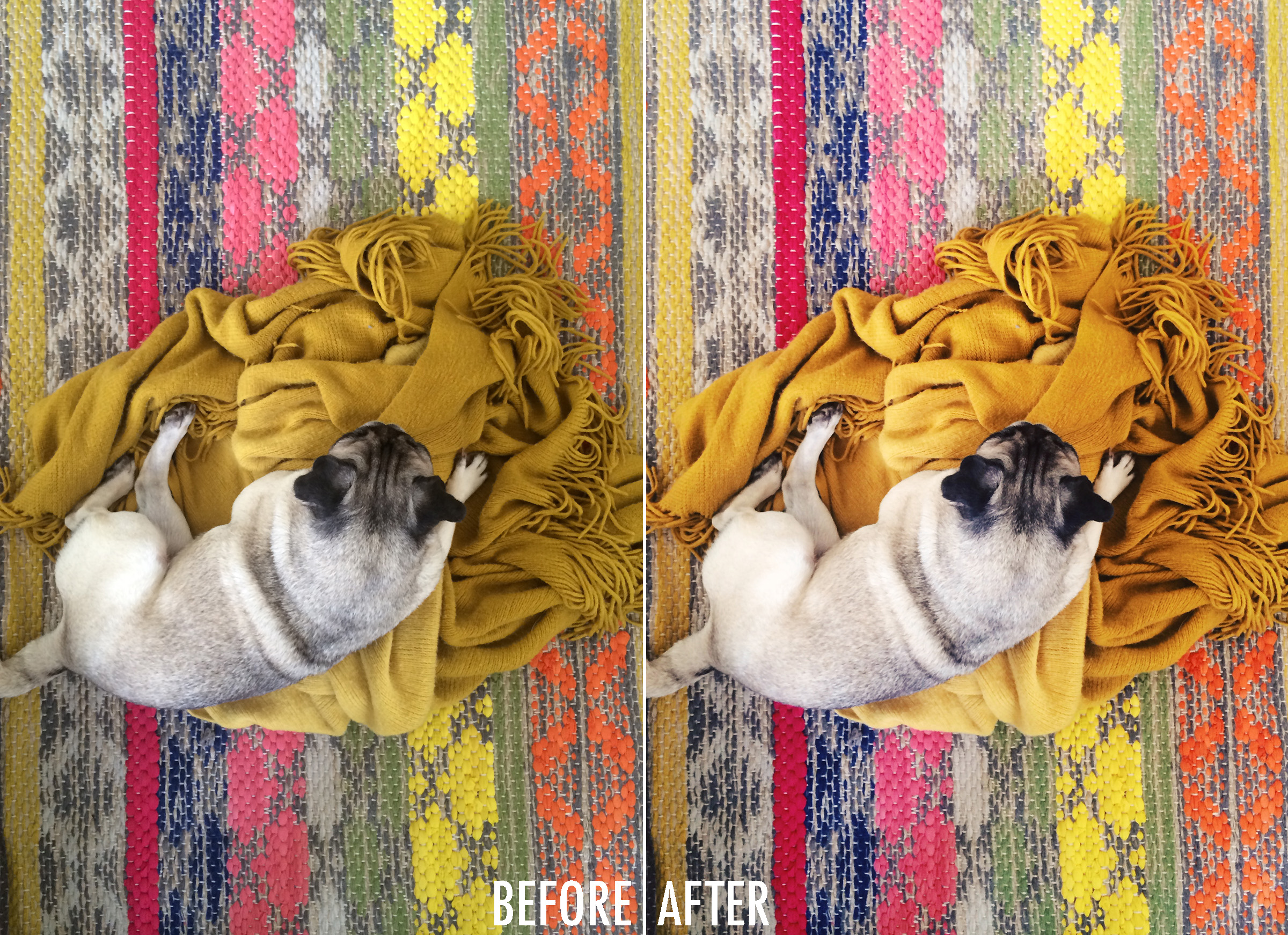 How to create bright and sharp photos with your iPhone (Tip 1)