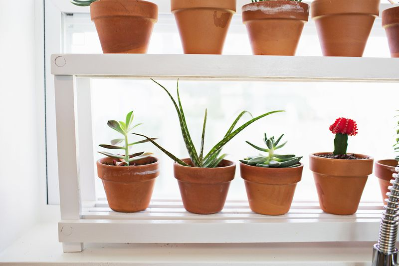 Window Ledge Plant Shelf – A Beautiful Mess