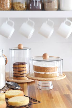 DIY Cake Dome & Cloche Jars