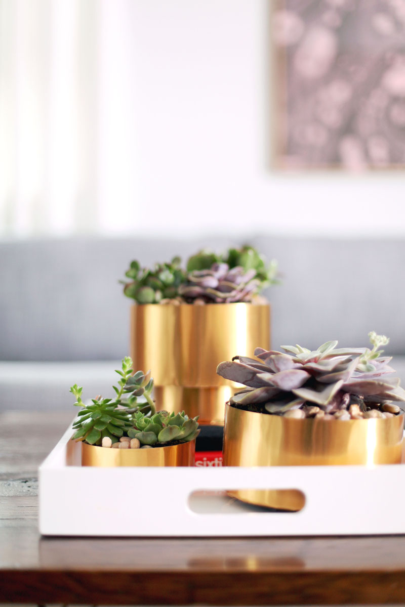 Make this brass succulent planter for just a few dollars! Click through for materials and instructions.