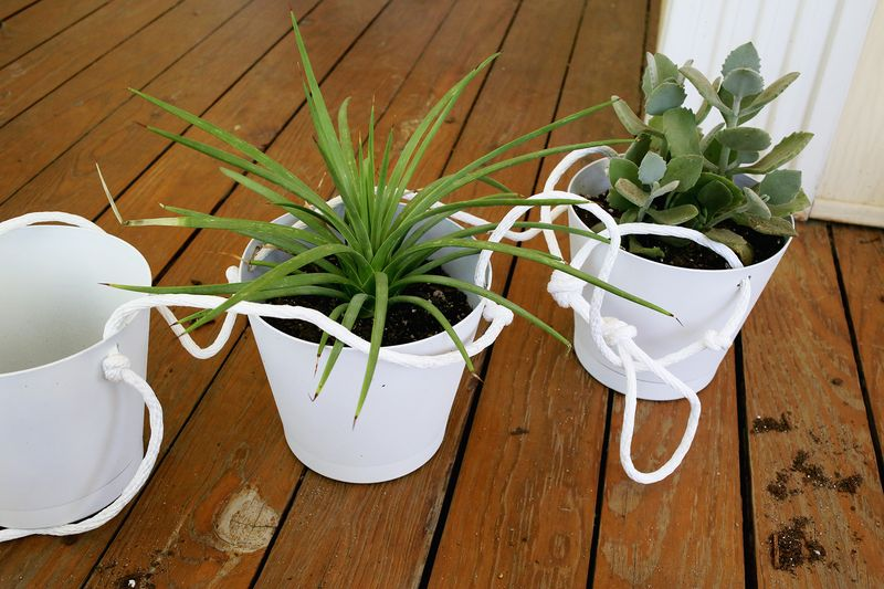 3 Tier Indoor Rope Planter :: potting