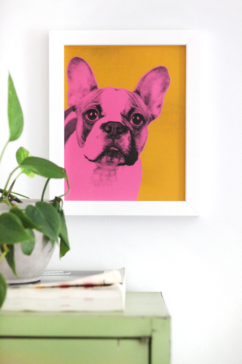 Pop Art Pet Portraits Inspired By Andy Warhol And Easy To Make