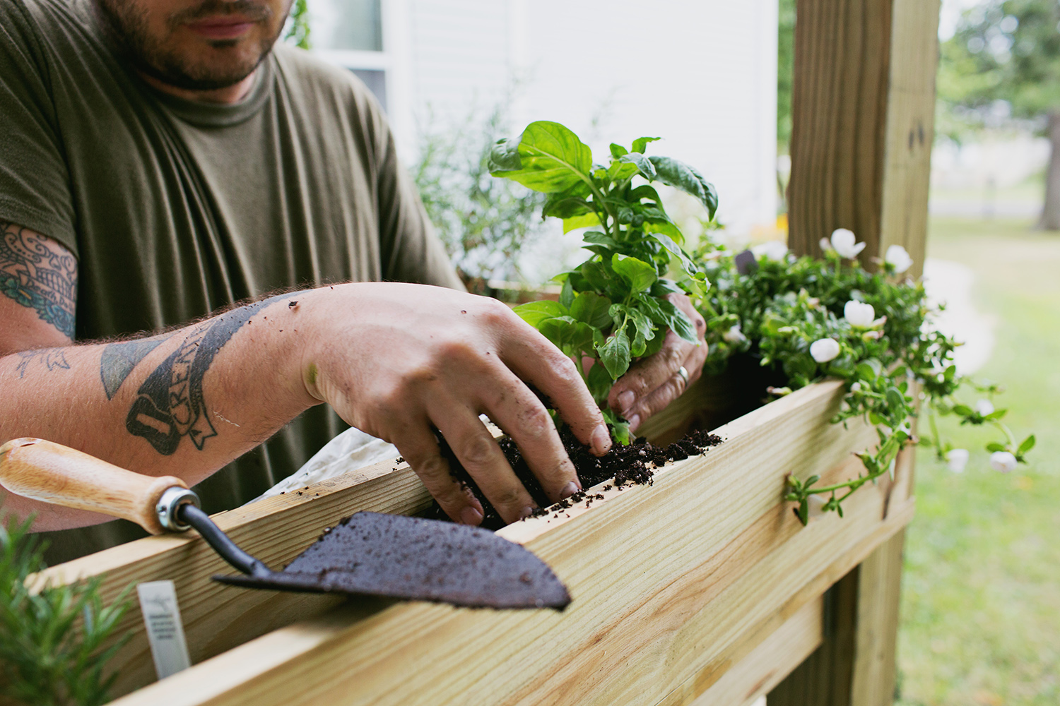 Build your own pergola - planting herbs (click for more).  jpg