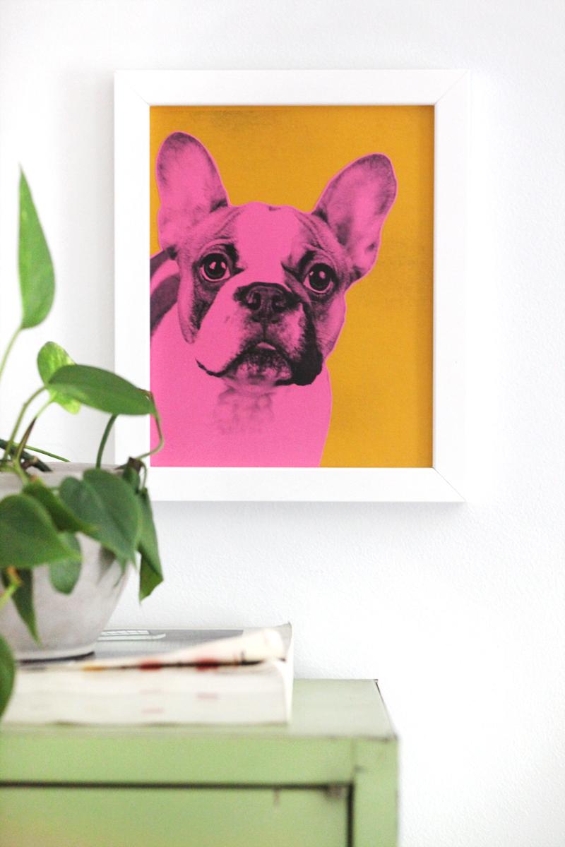 Make your own pop art pet portrait