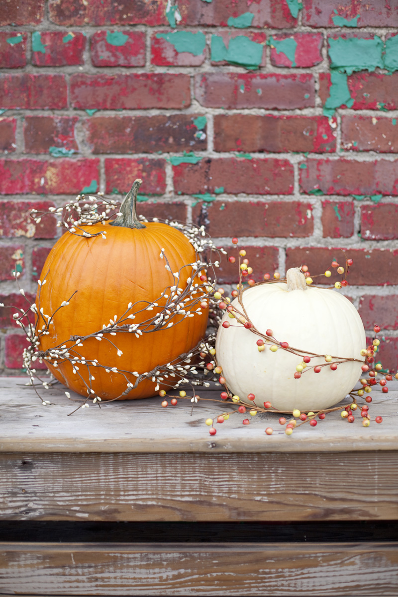 Easy No Carve Pumpkin Ideas A Beautiful Mess