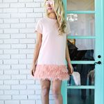 Feather Blocked Dress DIY