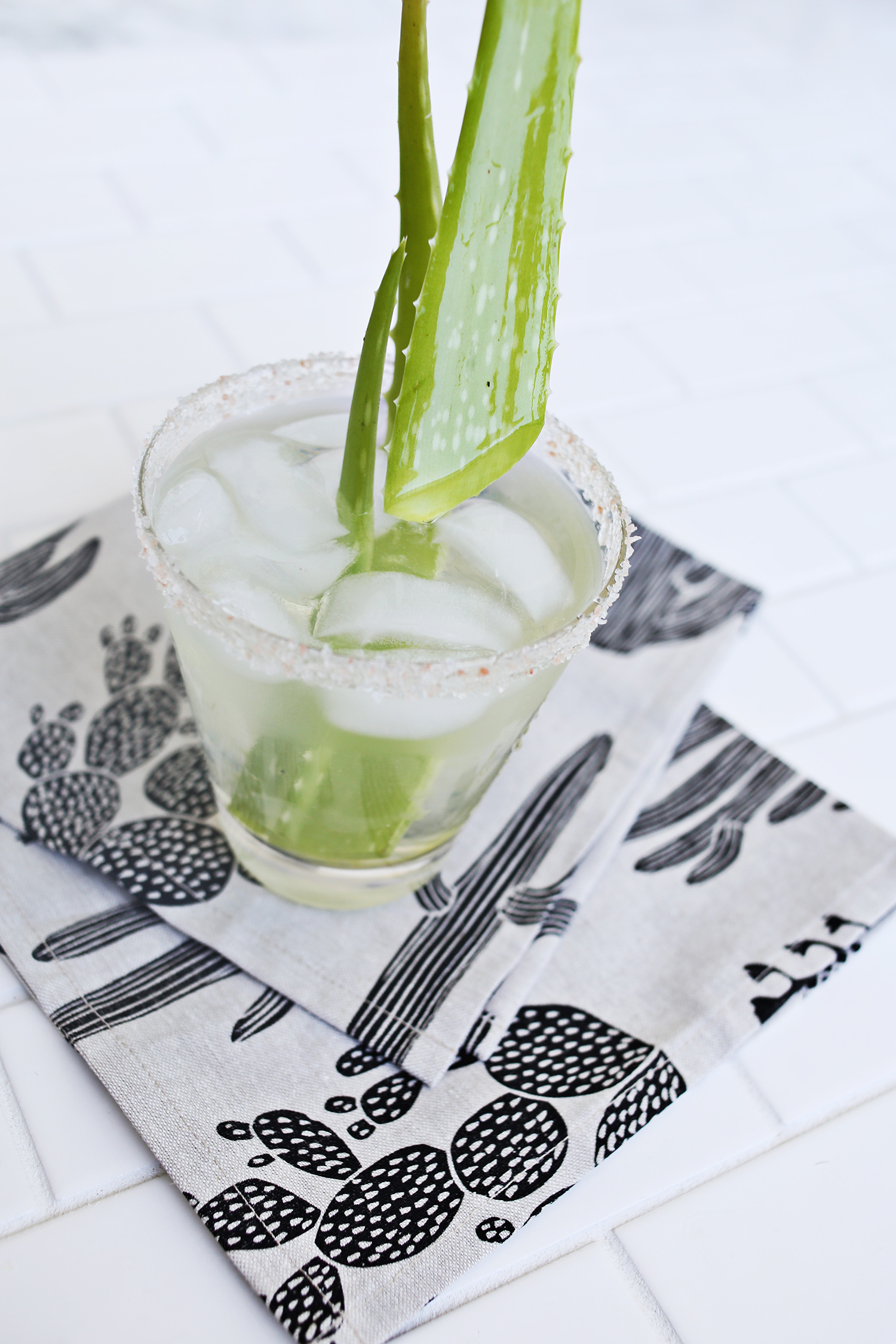 Aloe Margarita Recipe