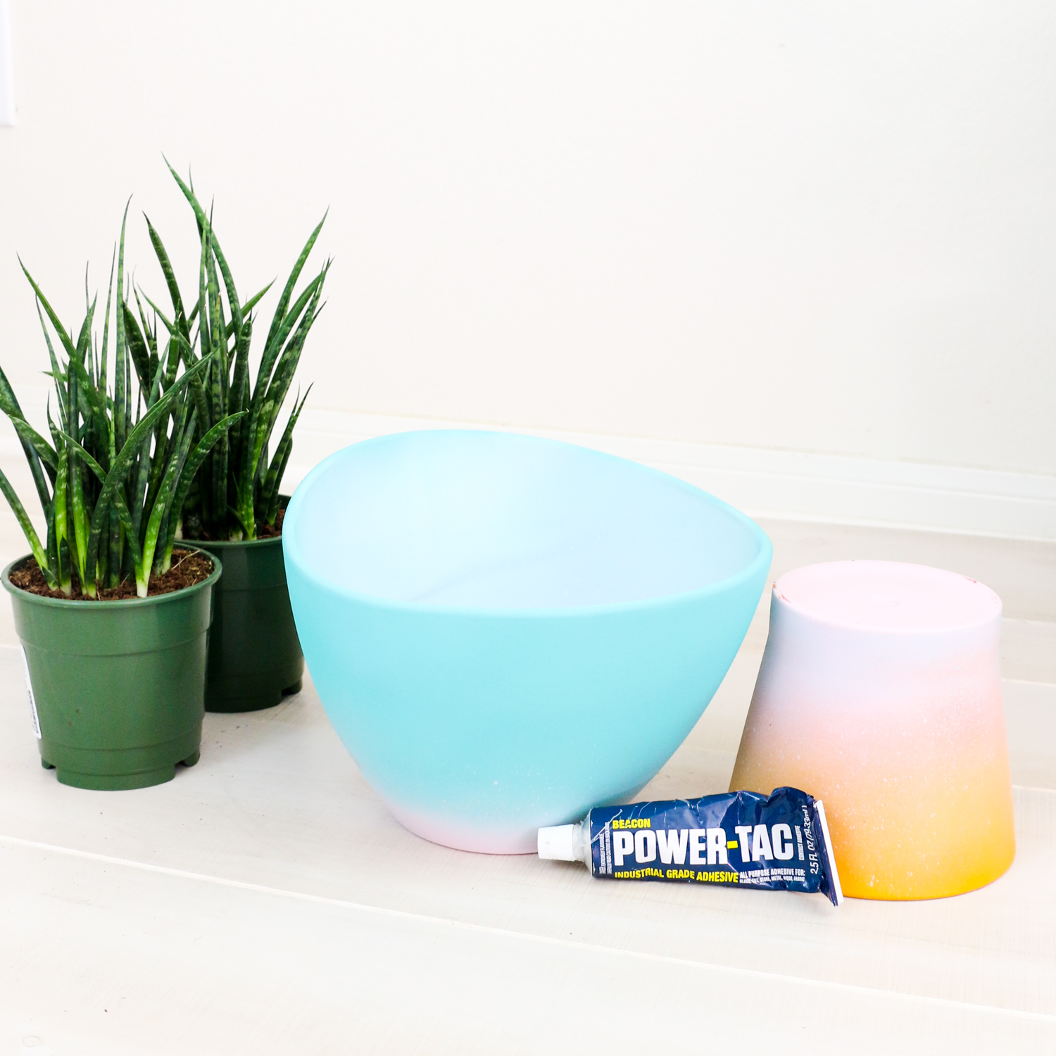 DIY Gradient Planter (Click Through for Tutorial)_