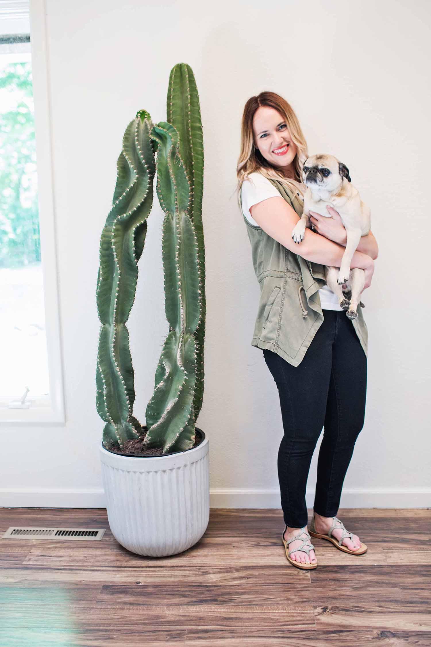 Emma's giant cactus