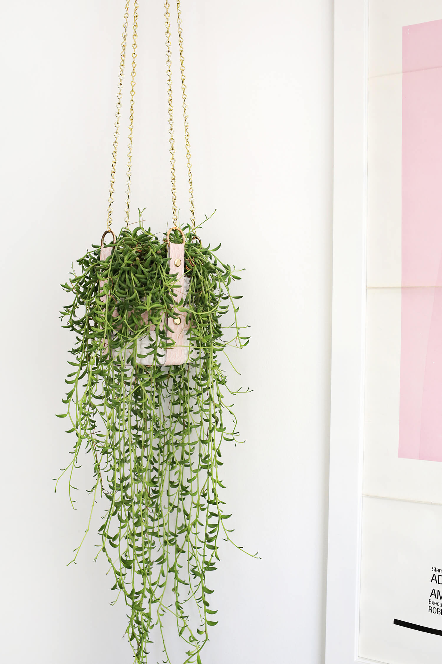 beautiful house plant stand. Hanging Leather Strap Planter DIY Indoor Plants Archives  A Beautiful Mess