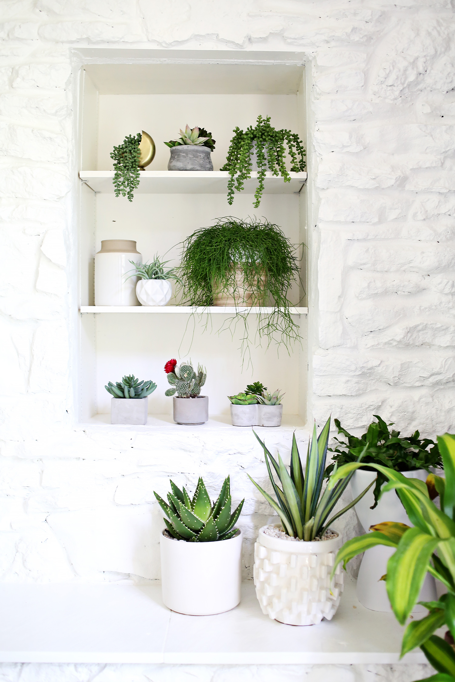 Are you faux real? (How to find convincing fake plants)