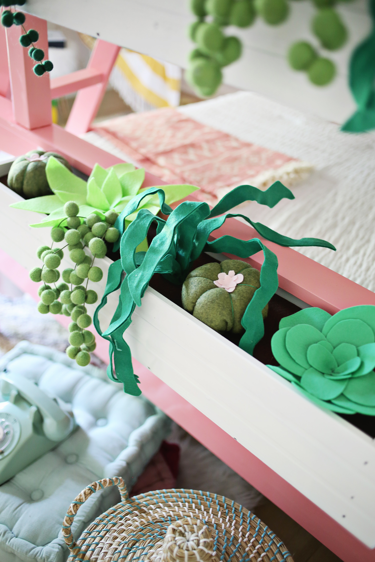 Plush succulent boxes