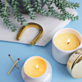Make Your Own Beeswax Candles!  - January 25, 2017