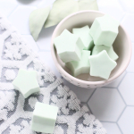 Peppermint & Eucalyptus Shower Melts